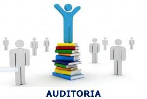 auditoria-300x242